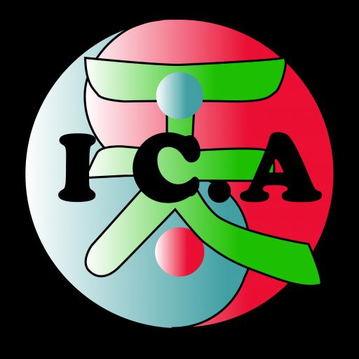Institut Català de Acupuntura